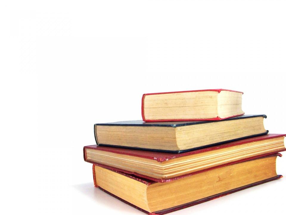 Sugerencias de lectura en curso